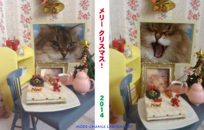 2014xmas_pair_mcl_s_3